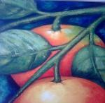 Frutos Espatulados